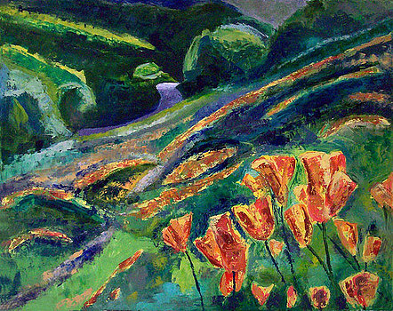 Cover Image_mt-diablo-poppies